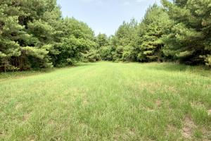 Uriah Riverfront Hunting & Timber Investment in Monroe, AL (5 of 61)