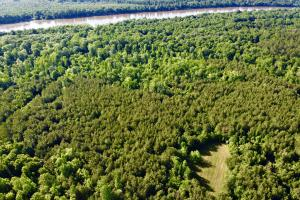 Uriah Riverfront Hunting & Timber Investment in Monroe, AL (57 of 61)