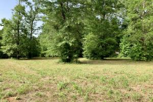 Uriah Riverfront Hunting & Timber Investment in Monroe, AL (56 of 61)