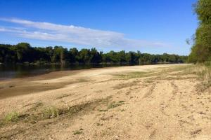Uriah Riverfront Hunting & Timber Investment in Monroe, AL (32 of 61)