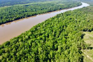 Uriah Riverfront Hunting & Timber Investment in Monroe, AL (3 of 61)
