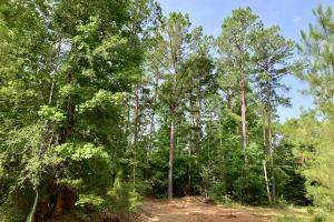 Uriah Riverfront Hunting & Timber Investment in Monroe, AL (35 of 61)
