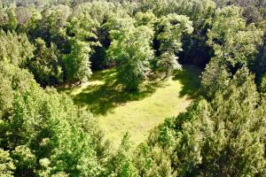 Uriah Riverfront Hunting & Timber Investment in Monroe, AL (19 of 61)