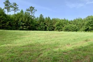 Uriah Riverfront Hunting & Timber Investment in Monroe, AL (27 of 61)