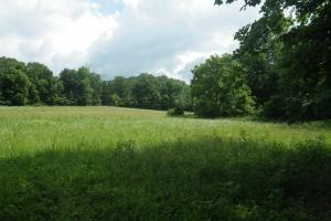 27 Acre Farm with Creek Frontage and Trout Fishing in Hart, KY (29 of 64)