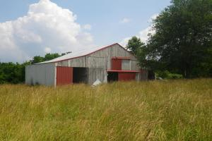 27 Acre Farm with Creek Frontage and Trout Fishing in Hart, KY (11 of 64)