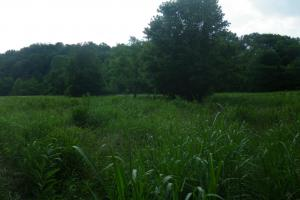 27 Acre Farm with Creek Frontage and Trout Fishing in Hart, KY (26 of 64)