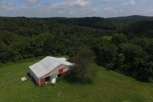 27 Acre Farm with Creek Frontage and Trout Fishing in Hart, KY (62 of 64)