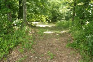 27 Acre Farm with Creek Frontage and Trout Fishing in Hart, KY (32 of 64)