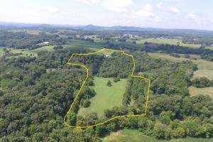27 Acre Farm with Creek Frontage and Trout Fishing in Hart, KY (5 of 64)