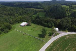 27 Acre Farm with Creek Frontage and Trout Fishing in Hart, KY (63 of 64)
