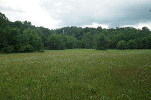 27 Acre Farm with Creek Frontage and Trout Fishing in Hart, KY (31 of 64)
