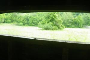 27 Acre Farm with Creek Frontage and Trout Fishing in Hart, KY (28 of 64)