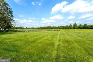 Open Pasture with ample paddocks (5 of 28)