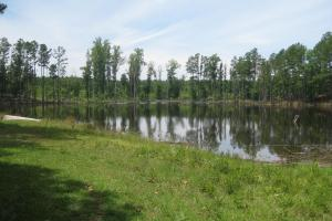 Beautiful pond 5+/- acres. (1 of 27)