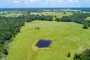110 Acres 3 ponds, Timber, Great Building Site near Canton  in Van Zandt, TX (4 of 12)