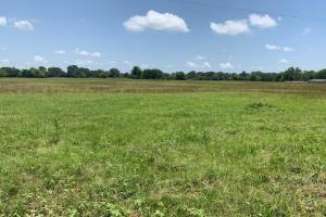 110 acre tract in Grand Saline (10 of 12)
