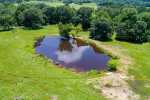 110 Acres 3 ponds, Timber, Great Building Site near Canton  in Van Zandt, TX (7 of 12)