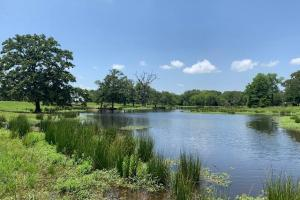 62 Acres Rolling Terrain, Trees, Lake, Pond, near Canton