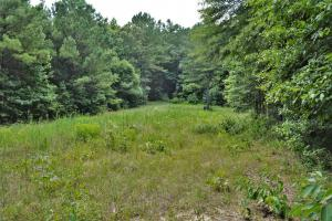 Tannehill Hunting and Homestead Property in Bibb, AL (12 of 18)