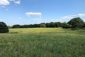 27 acres Thick Timber, Road Frontage, Building Sites in Malakoff in Henderson, TX (2 of 16)