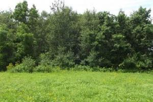7 + Acres recreational land with cabin in Grant, WI (12 of 16)