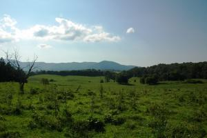 55 Acre Mountain View Farm - Cocke County TN