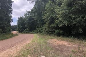 Big Black River Hunting & Ag Land in Attala, MS (3 of 24)