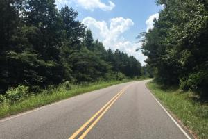 Hanceville Timber & Hunting Tract in Cullman County, AL (13 of 21)