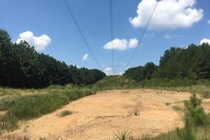 Hanceville Timber & Hunting Tract in Cullman County, AL (19 of 21)