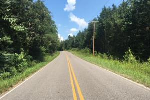 Hanceville Timber & Hunting Tract in Cullman County, AL (15 of 21)