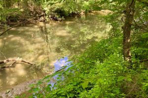 Shell Creek Camp, RV and Recreational Tract - Wilcox County AL