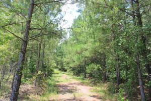 Santee Area Large Acreage Investment in Orangeburg, SC (12 of 12)