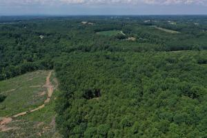 Eufola RD  Hunting and Timber Tract in Iredell, NC (29 of 44)