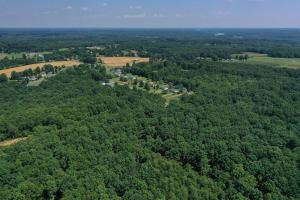Eufola RD  Hunting and Timber Tract in Iredell, NC (13 of 44)