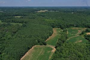 Eufola RD  Hunting and Timber Tract in Iredell, NC (40 of 44)