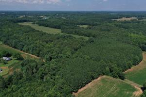 Eufola RD  Hunting and Timber Tract in Iredell, NC (26 of 44)