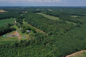Eufola RD  Hunting and Timber Tract in Iredell, NC (33 of 44)