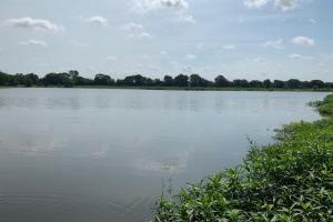 Very smooth, perfect for kayaking, or canoeing on 75 acres near Lake Fork.  (18 of 19)