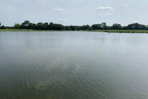 Beautiful lake nestled on 75 acres in Emory.  (19 of 19)