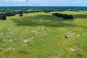 25 acres in Rains County near Lake Fork. (2 of 16)