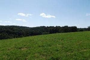 32 +/- Acres Tower rd in Grant County, WI (21 of 21)