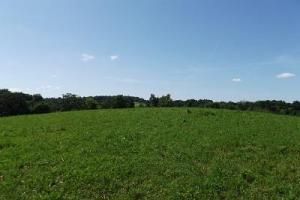 32 +/- Acres Tower rd in Grant County, WI (20 of 21)