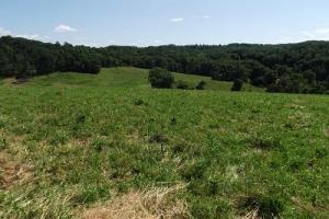 32 +/- Acres Tower rd in Grant County, WI (7 of 21)