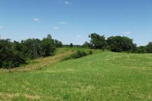 32 +/- Acres Tower rd in Grant County, WI (10 of 21)