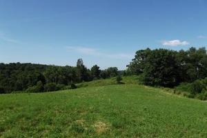 32 +/- Acres Tower rd - Grant County WI