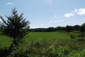 32 +/- Acres Tower rd in Grant County, WI (14 of 21)