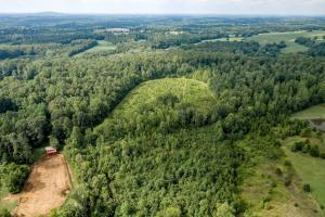 Rural Acreage with Timber and Field in Rowan, NC (4 of 34)