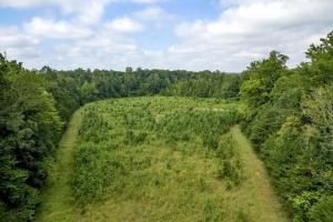 Rural Acreage with Timber and Field in Rowan, NC (7 of 34)