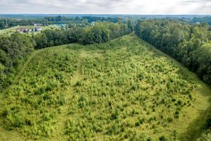 Rural Acreage with Timber and Field in Rowan, NC (11 of 34)